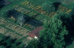Aerial view #3 of the Gardens